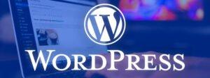 disseny web wordpress