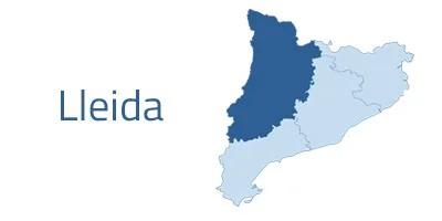 Mantenimiento informático Lleida